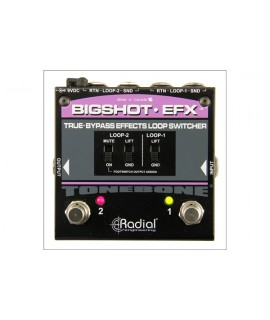 RADIAL BIGSHOT EFX REV2